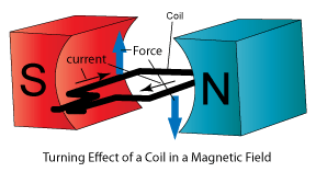 Force on current-carrying rectangular coil in a Magnetic field