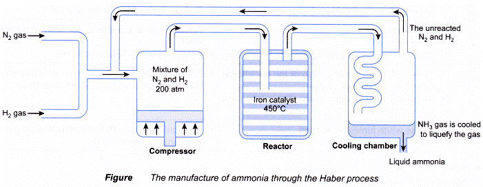 Manufacturing of Ammonia by the Haber Process